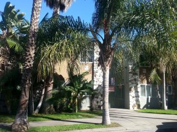 1146 Magnolia Ave.